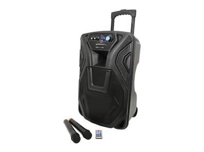 QTX Busker 12 Portable PA System