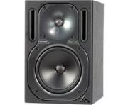 Behringer B2030A Single Monitor Speaker