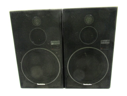 Technics SB-X100 Speakers (Pair)